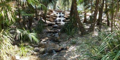 botanic-gardens1